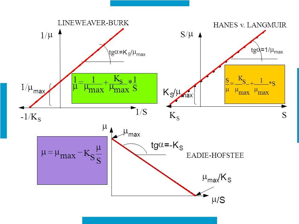 S/ 1/ s 1/m K 1/S -1/K =-K - /K /S LINEWEAVER-BURK HANES v. LANGMUIR