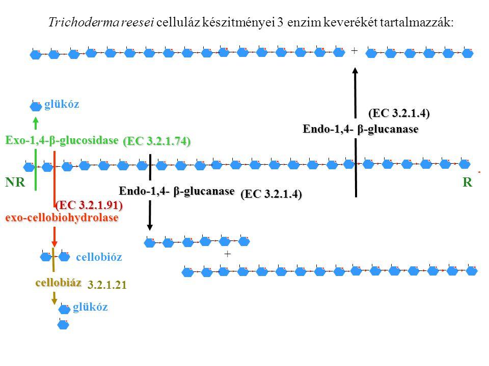 Trichoderma reesei celluláz készitményei 3 enzim keverékét tartalmazzák:
