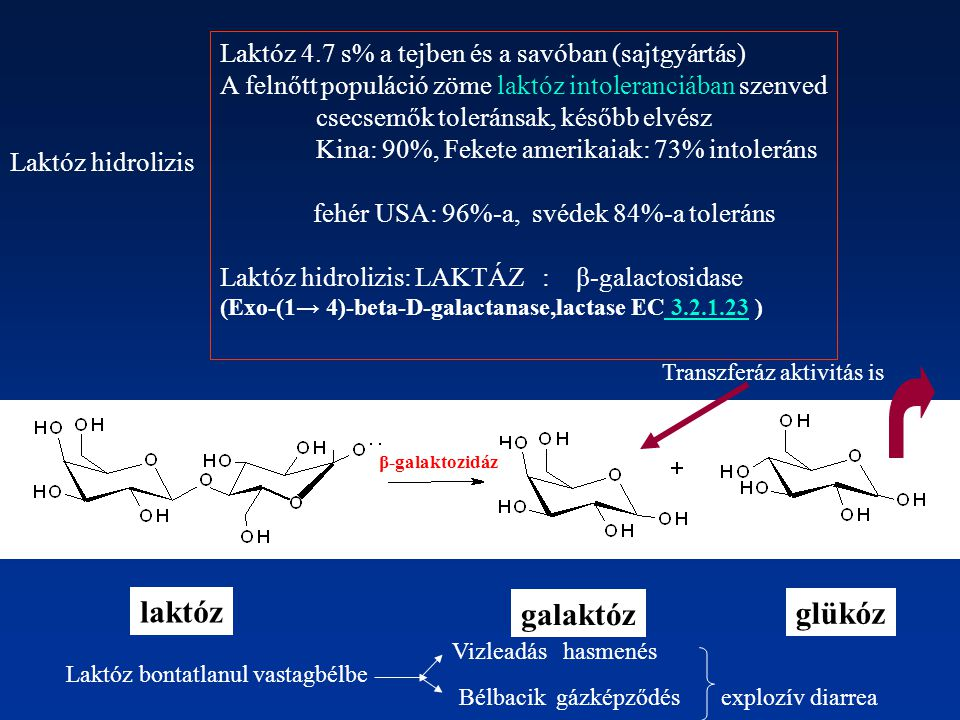 laktóz galaktóz glükóz