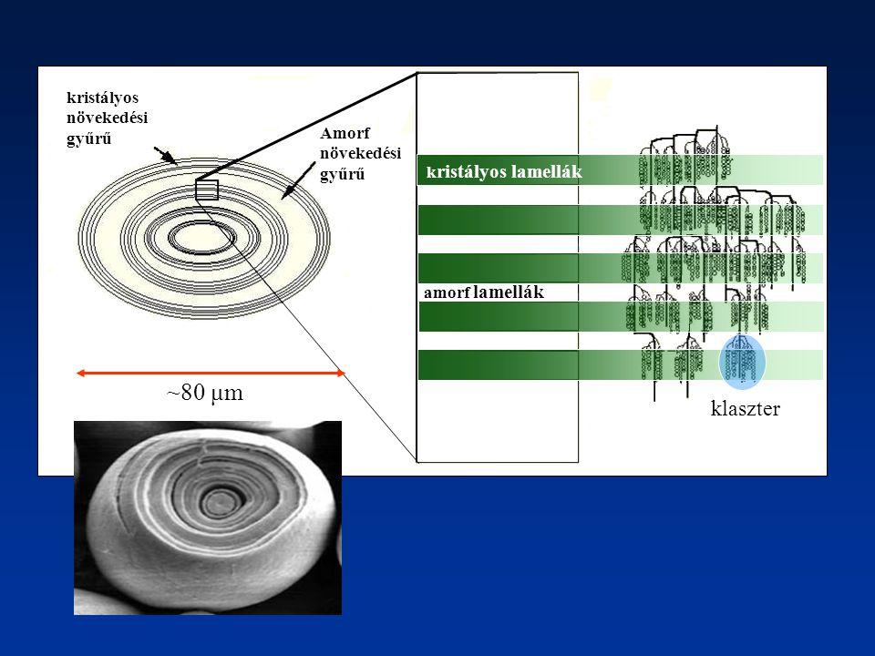~80 μm klaszter kristályos Amorf növekedési gyűrű kristályos lamellák