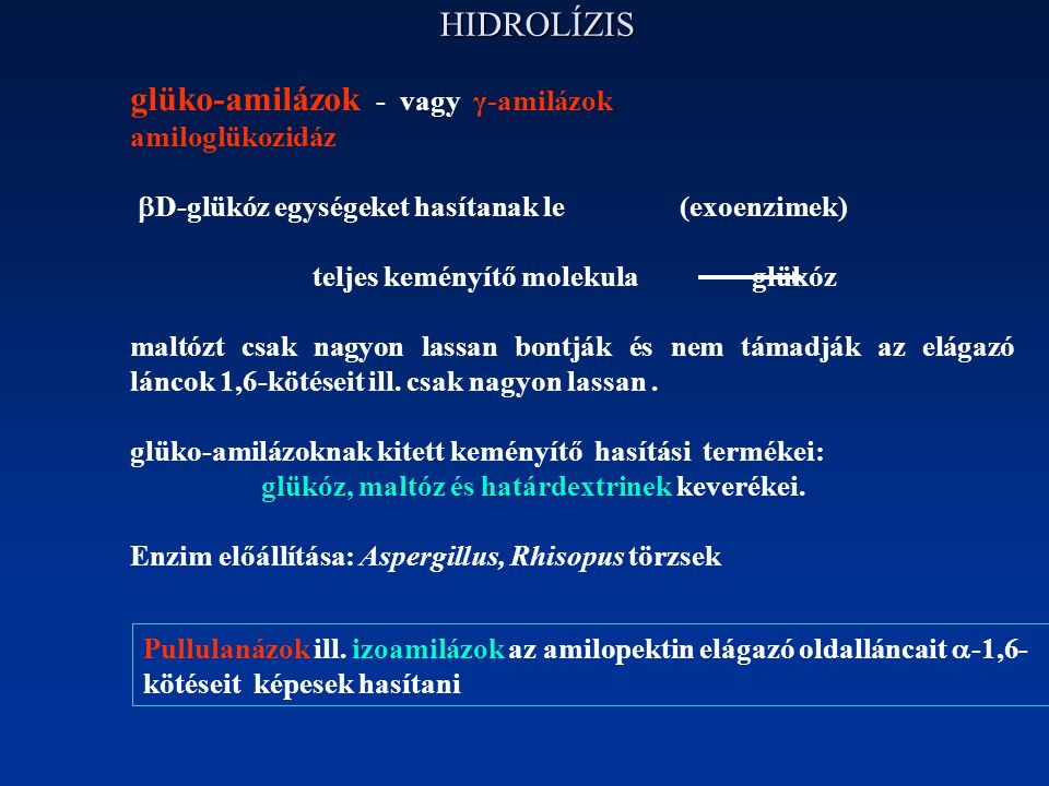 glüko-amilázok - vagy γ-amilázok
