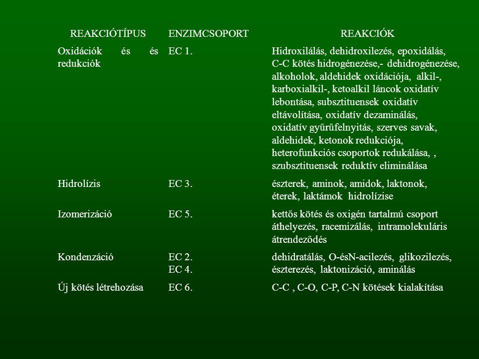 REAKCIÓTÍPUS ENZIMCSOPORT. REAKCIÓK. Oxidációk és és redukciók. EC 1. Hidroxilálás, dehidroxilezés, epoxidálás,