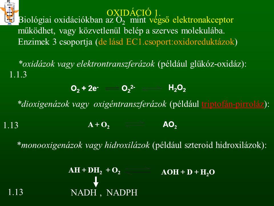 Enzimek 3 csoportja (de lásd EC1.csoport:oxidoreduktázok)