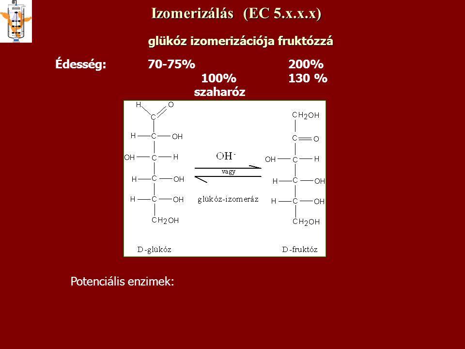 Izomerizálás (EC 5.x.x.x) glükóz izomerizációja fruktózzá