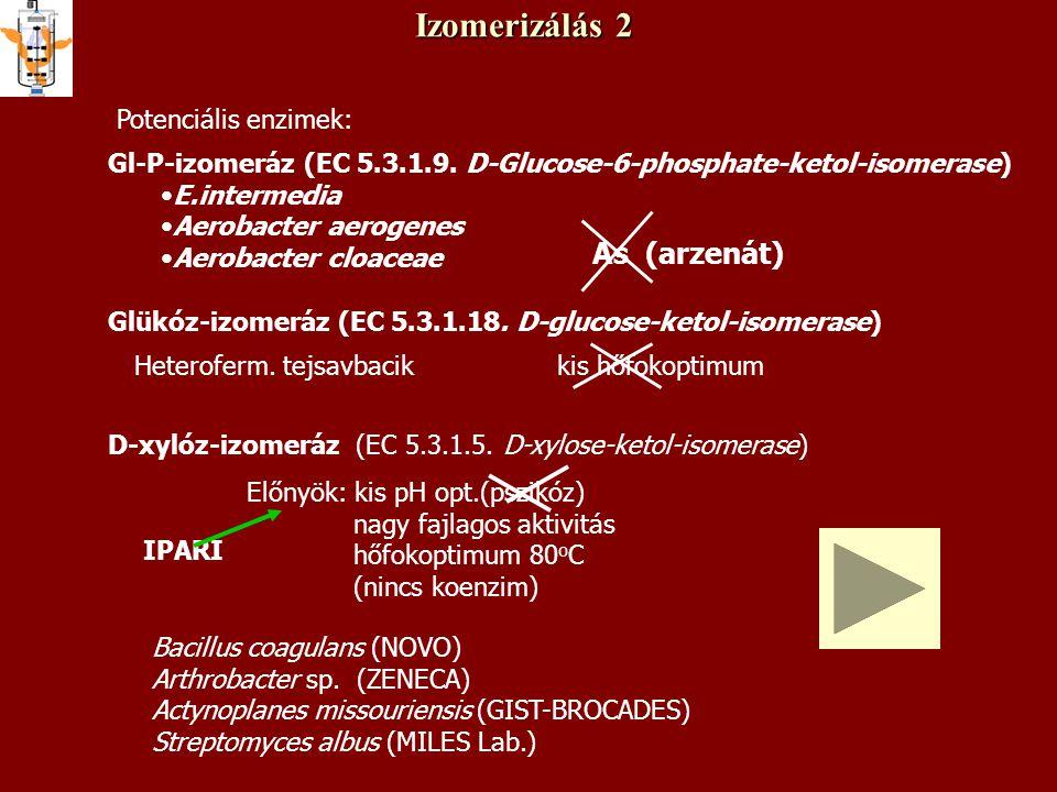 Izomerizálás 2 As (arzenát) Potenciális enzimek: