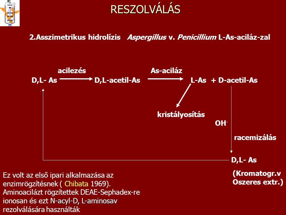 RESZOLVÁLÁS 2.Asszimetrikus hidrolízis Aspergillus v. Penicillium L-As-aciláz-zal. acilezés. As-aciláz.