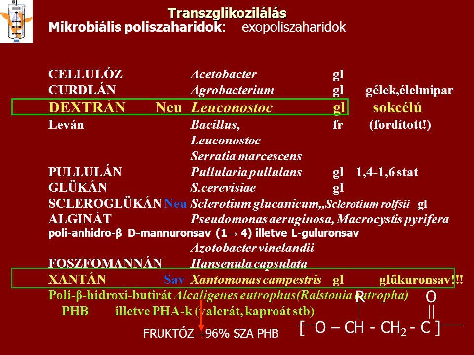 DEXTRÁN Neu Leuconostoc gl sokcélú
