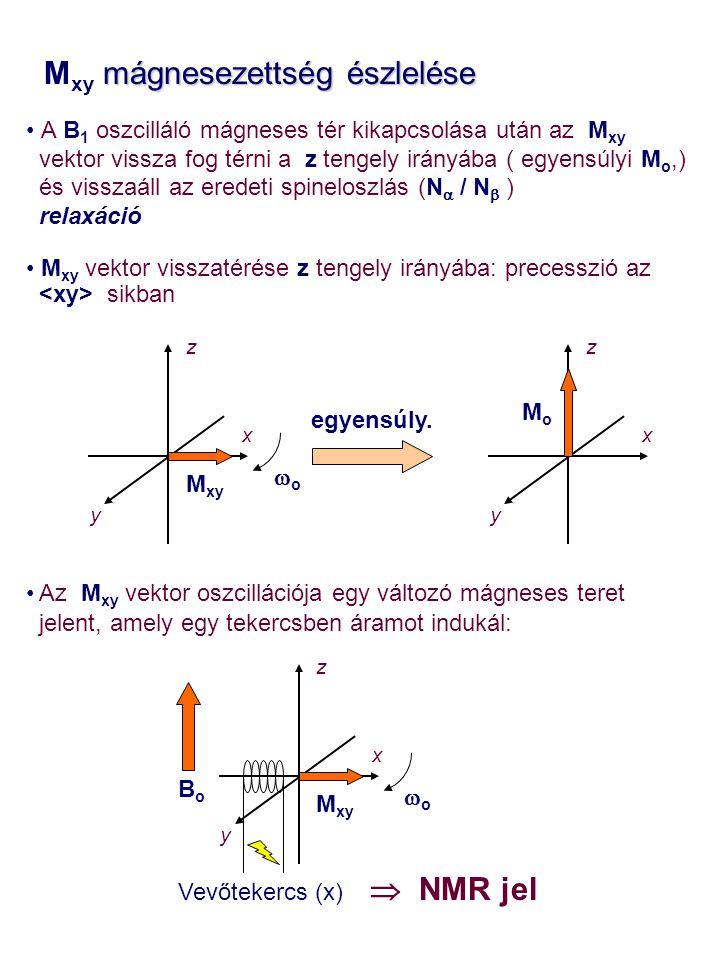 Mxy mágnesezettség észlelése