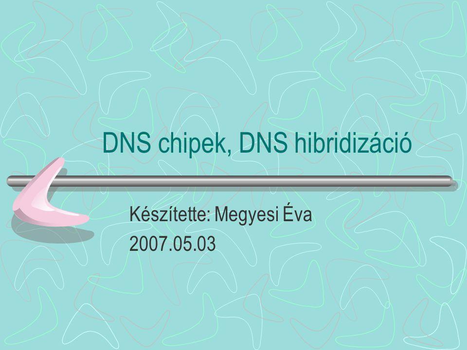 DNS chipek, DNS hibridizáció