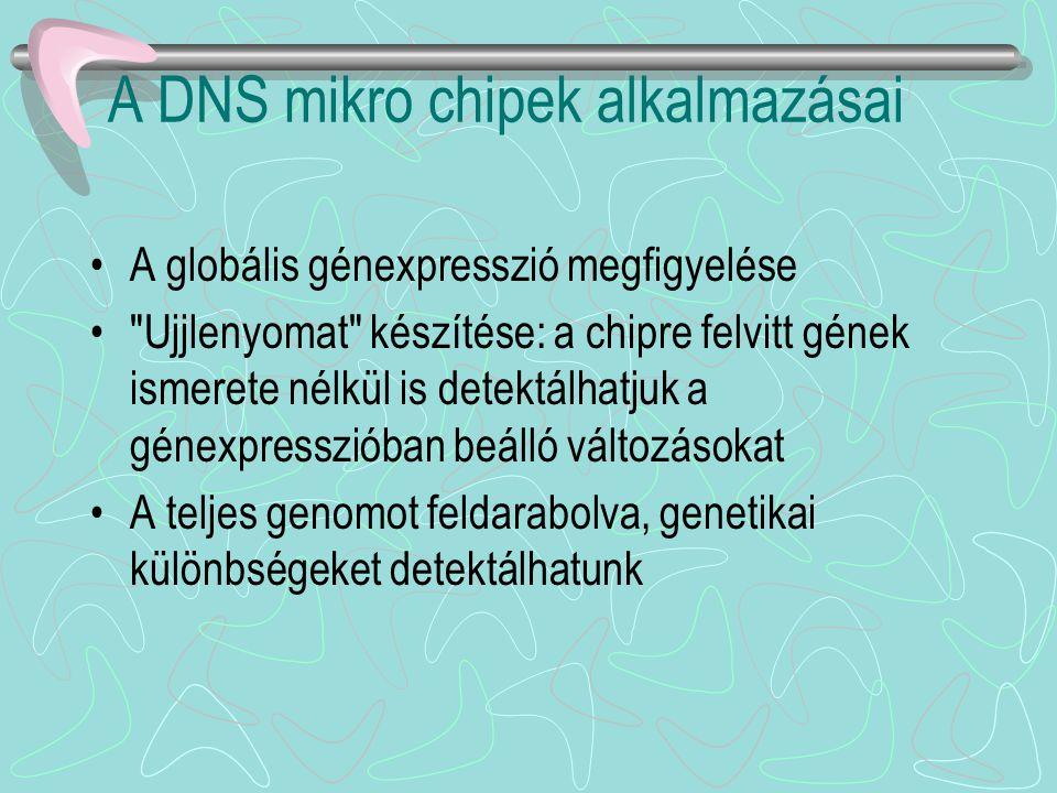A DNS mikro chipek alkalmazásai