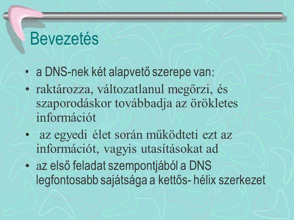 Bevezetés a DNS-nek két alapvető szerepe van: