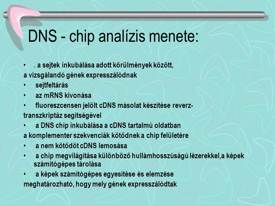 DNS - chip analízis menete: