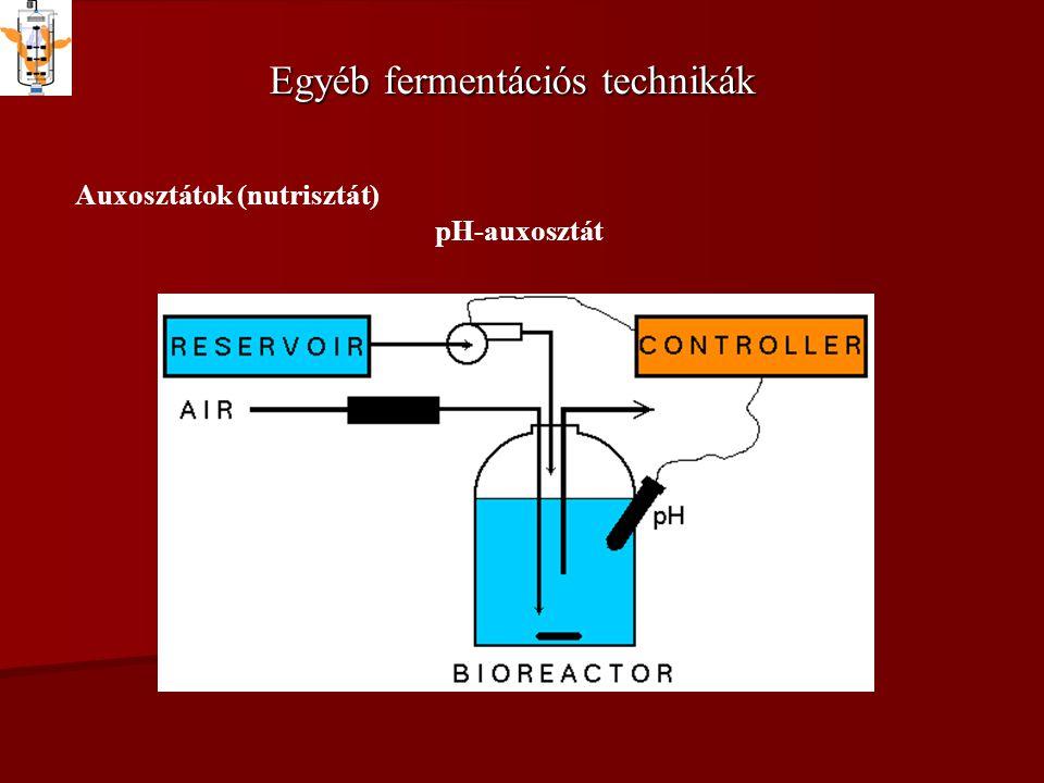 Egyéb fermentációs technikák