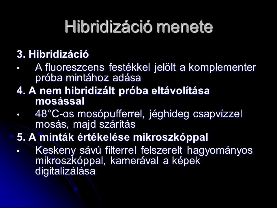Hibridizáció menete 3. Hibridizáció
