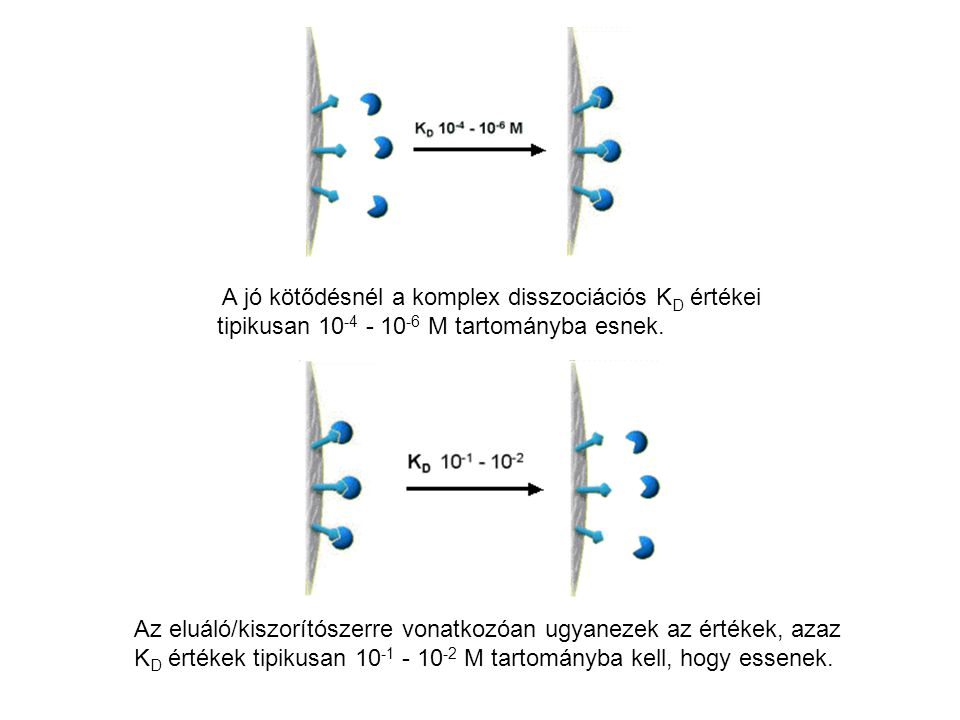 A jó kötődésnél a komplex disszociációs KD értékei tipikusan 10-4 - 10-6 M tartományba esnek.