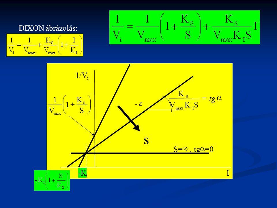 S 1/V a = tg S K V S= ¥ , tg a =0 -K I DIXON ábrázolás: ÷ ø ö ç è æ +