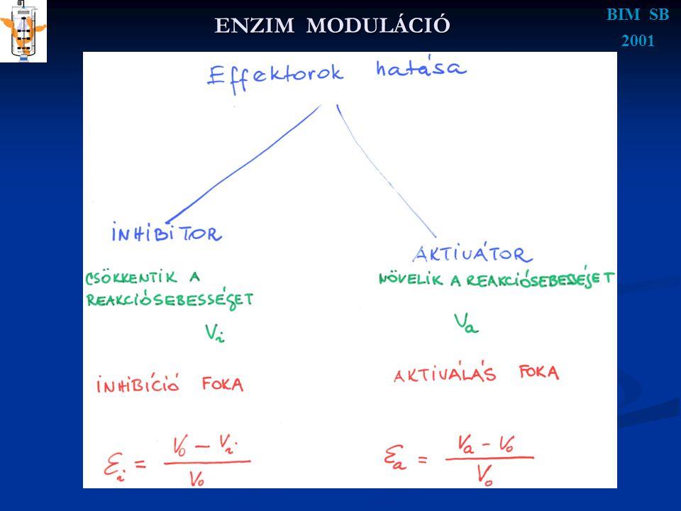 ENZIM MODULÁCIÓ BIM SB 2001