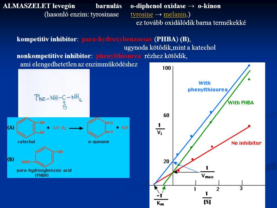 ALMASZELET levegőn barnulás o-diphenol oxidase → o-kinon