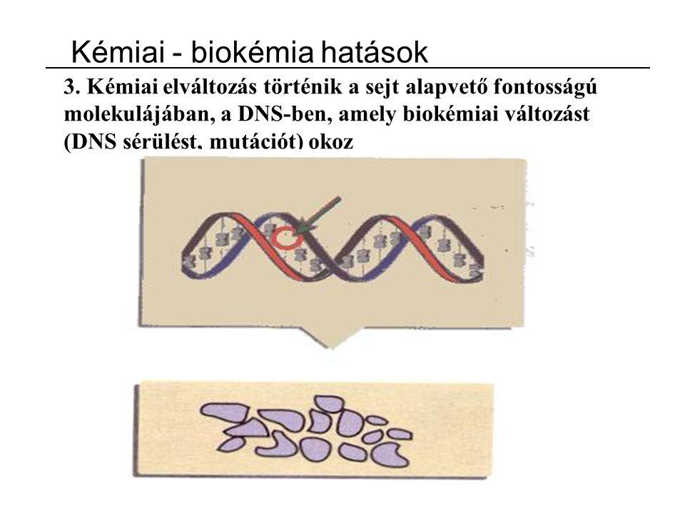 Kémiai - biokémia hatások