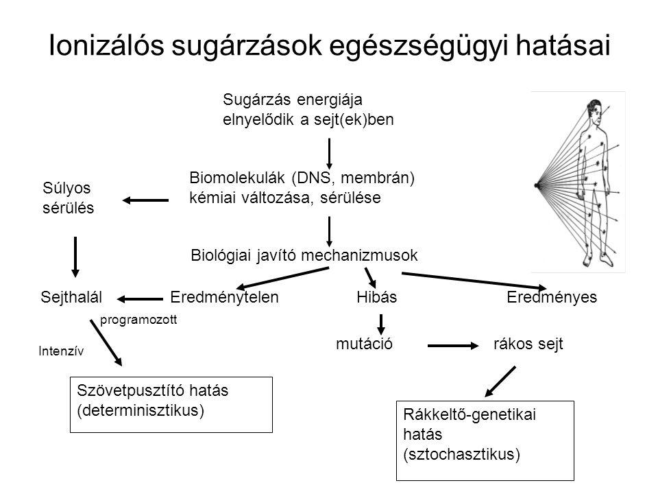 Ionizálós sugárzások egészségügyi hatásai