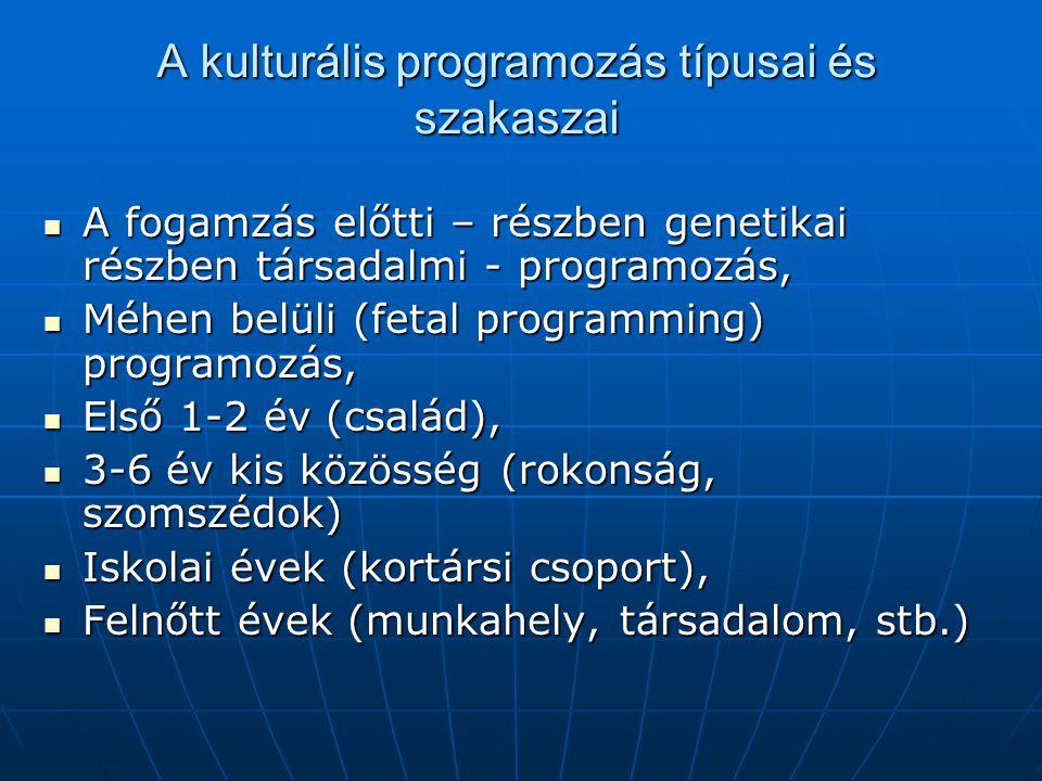 A kulturális programozás típusai és szakaszai