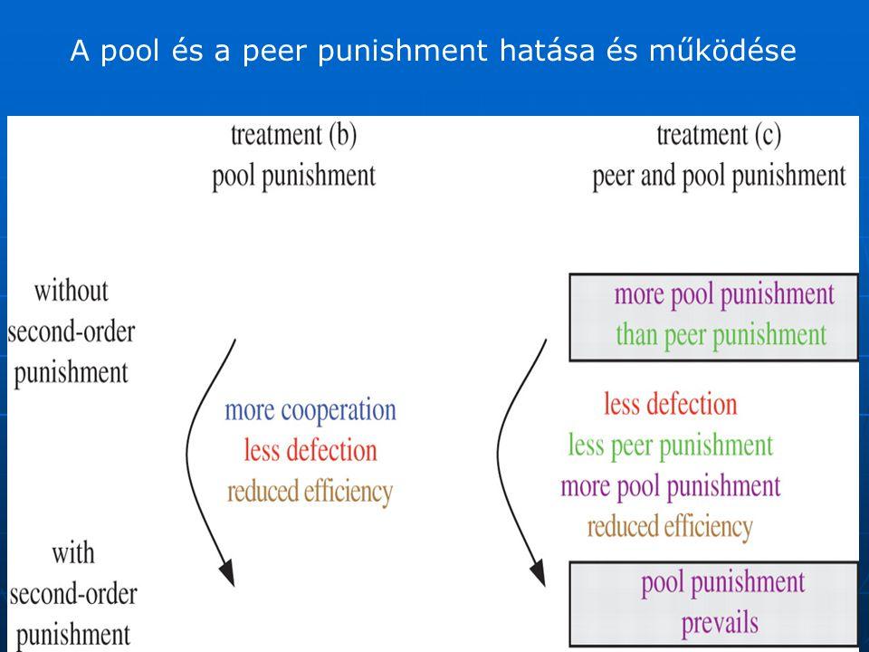 A pool és a peer punishment hatása és működése