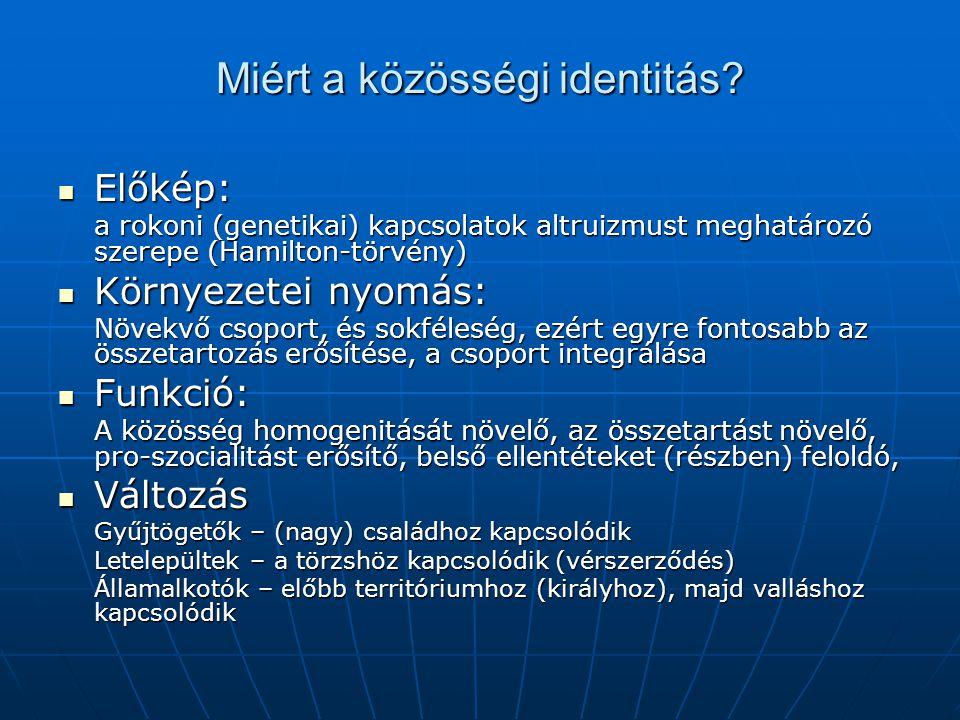 Miért a közösségi identitás