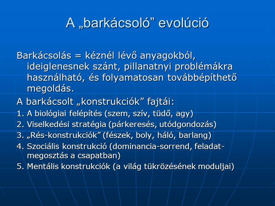 """A """"barkácsoló evolúció"""