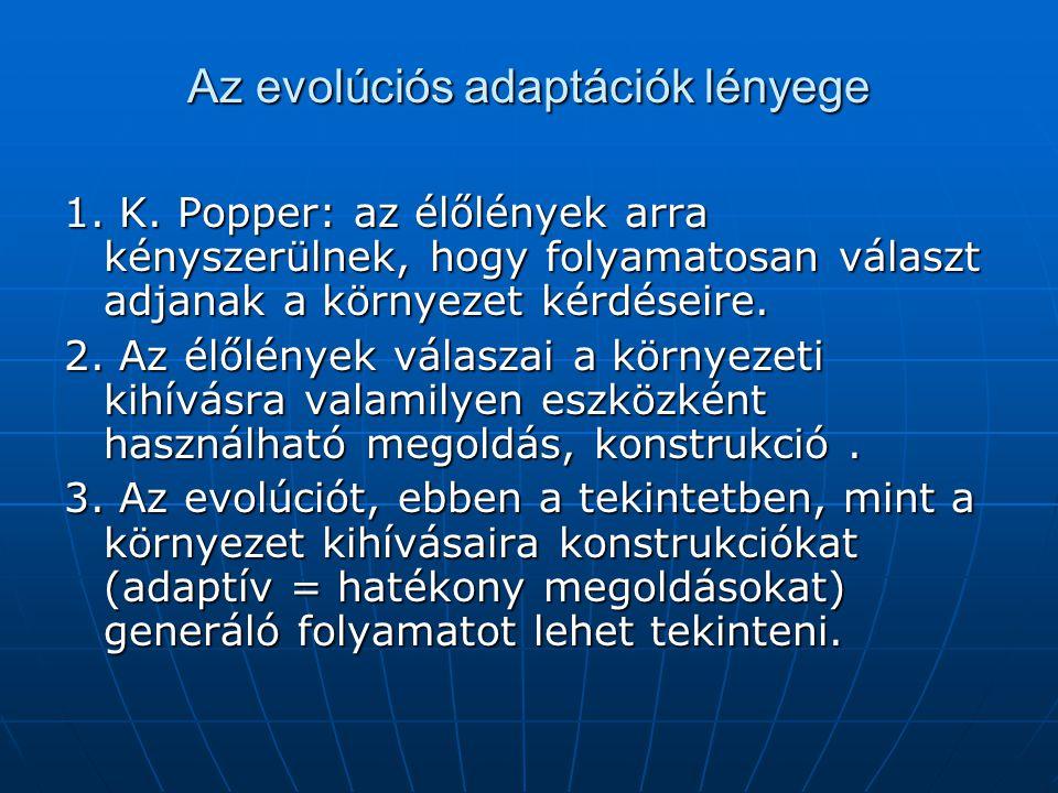 Az evolúciós adaptációk lényege