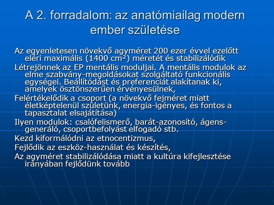 A 2. forradalom: az anatómiailag modern ember születése