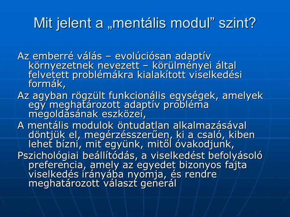 """Mit jelent a """"mentális modul szint"""