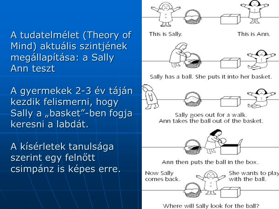 A tudatelmélet (Theory of Mind) aktuális szintjének megállapítása: a Sally Ann teszt