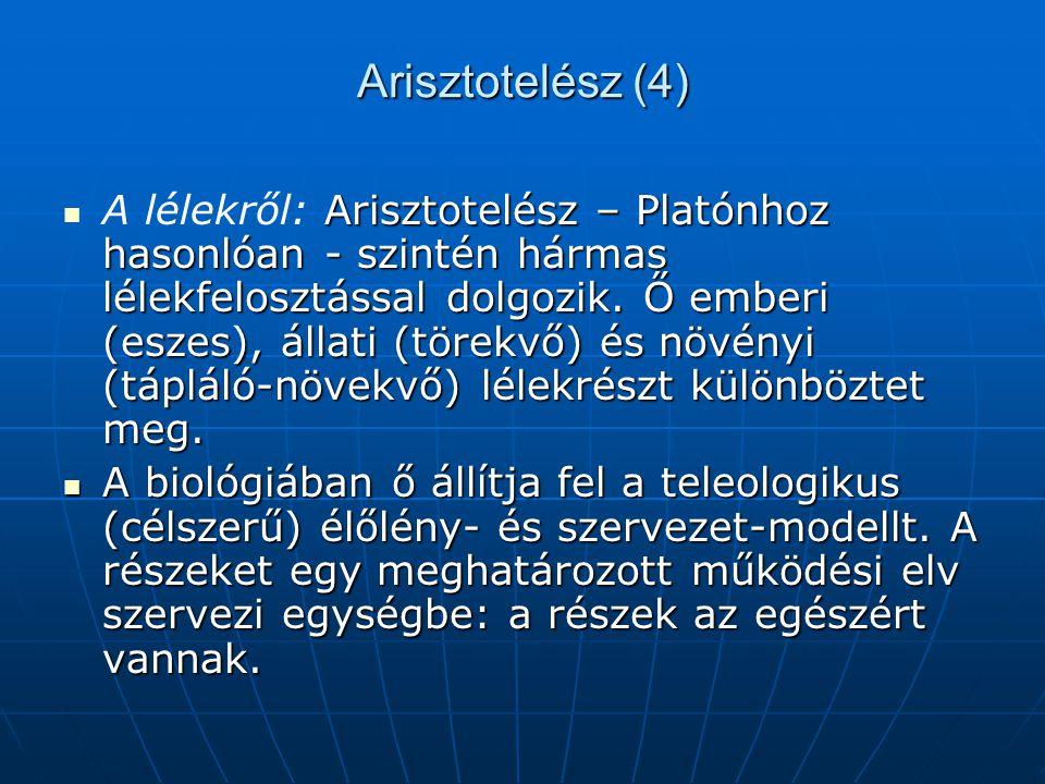 Arisztotelész (4)