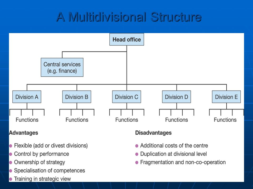 A Multidivisional Structure