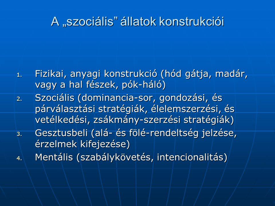 """A """"szociális állatok konstrukciói"""