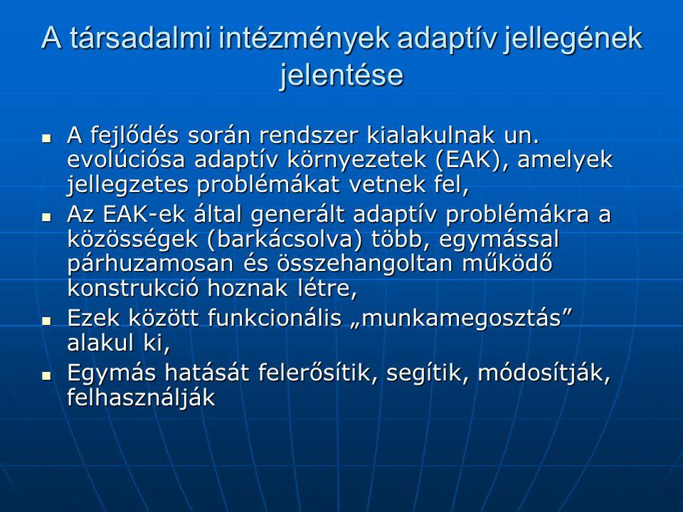A társadalmi intézmények adaptív jellegének jelentése