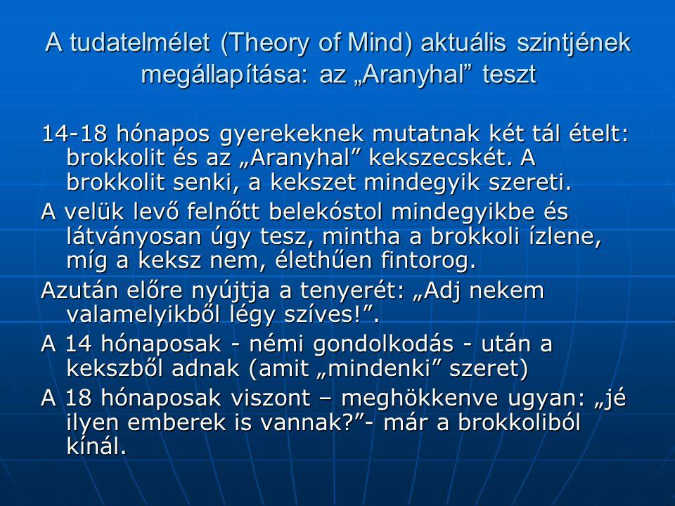 """A tudatelmélet (Theory of Mind) aktuális szintjének megállapítása: az """"Aranyhal teszt"""