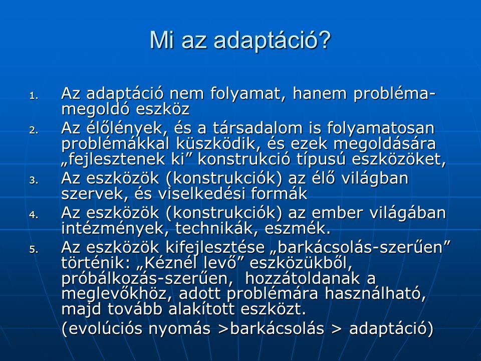 Mi az adaptáció Az adaptáció nem folyamat, hanem probléma-megoldó eszköz.