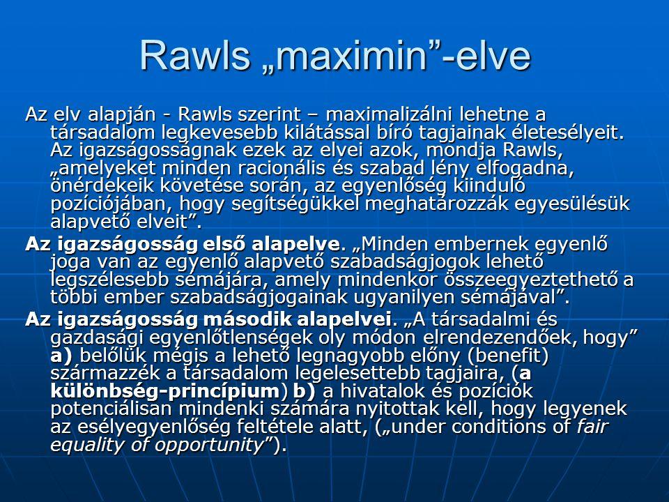 """Rawls """"maximin -elve"""