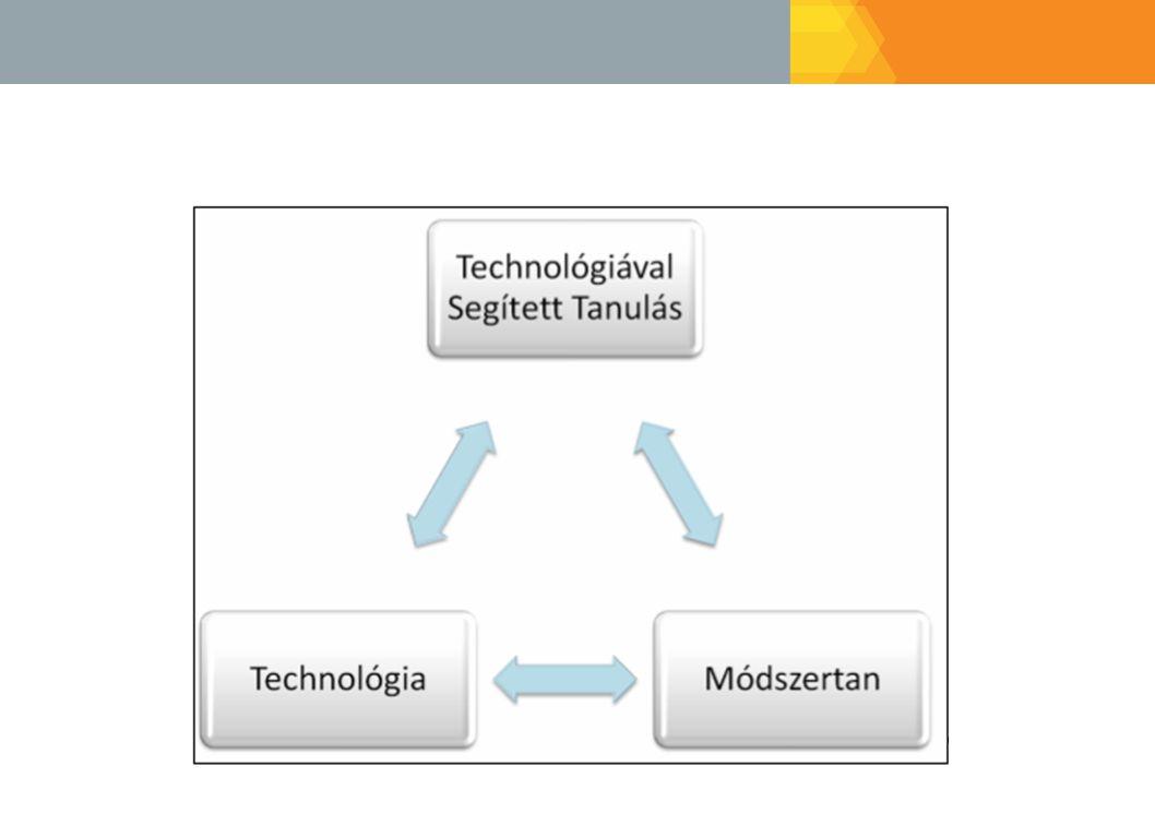 A virtuális tanulási környezetben a tanuló áll a középpontban, ezért az oktatási portál, az oktatási tartalom és az oktatók feladata az ő egyéni tanulási tevékenységének, a tanulás eredményességének támogatása. A technológiával segített tanulási környezetek nagyon sok esetben technológia és nem pedagógia központúak, melyek csökkentik a tanulás hatékonyságát. A megfelelő oktatási/tanulási módszerek használatával kiküszöbölhetőek az e-tanulás és a vegyes tanulás területén jelentkező problémák.