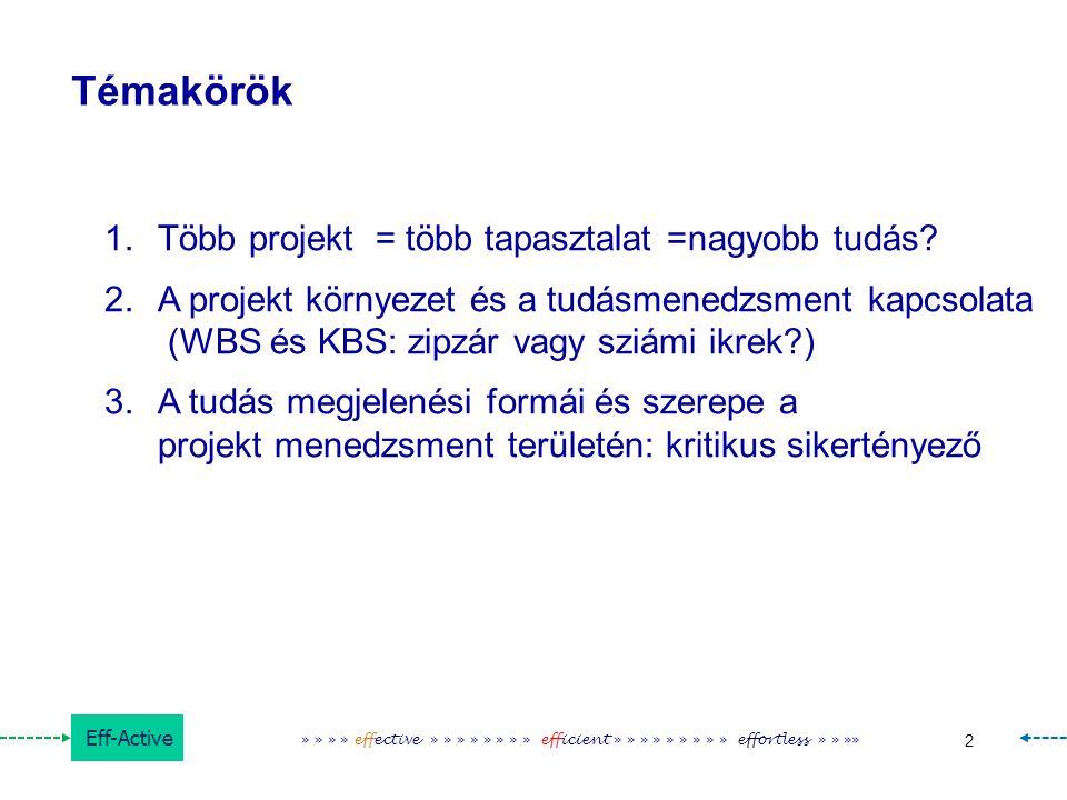 Témakörök Több projekt = több tapasztalat =nagyobb tudás