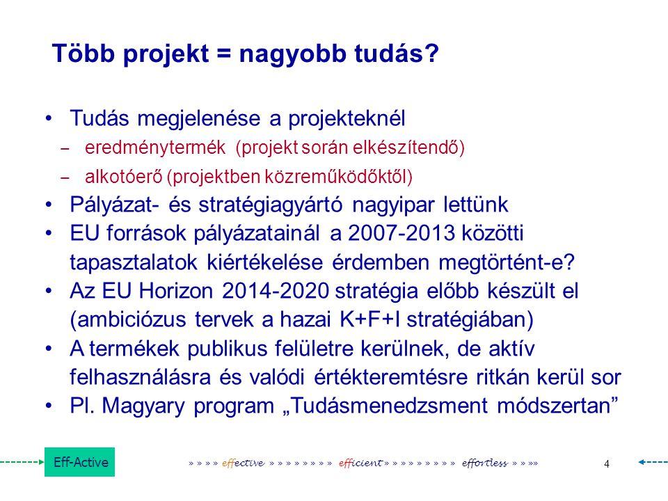 Több projekt = nagyobb tudás