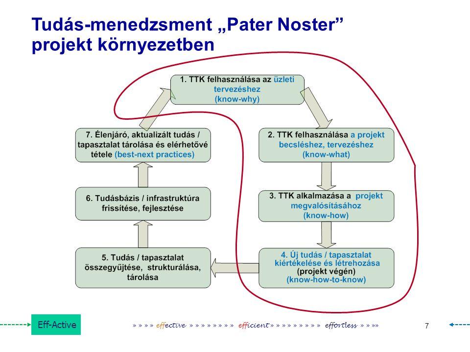 """Tudás-menedzsment """"Pater Noster projekt környezetben"""