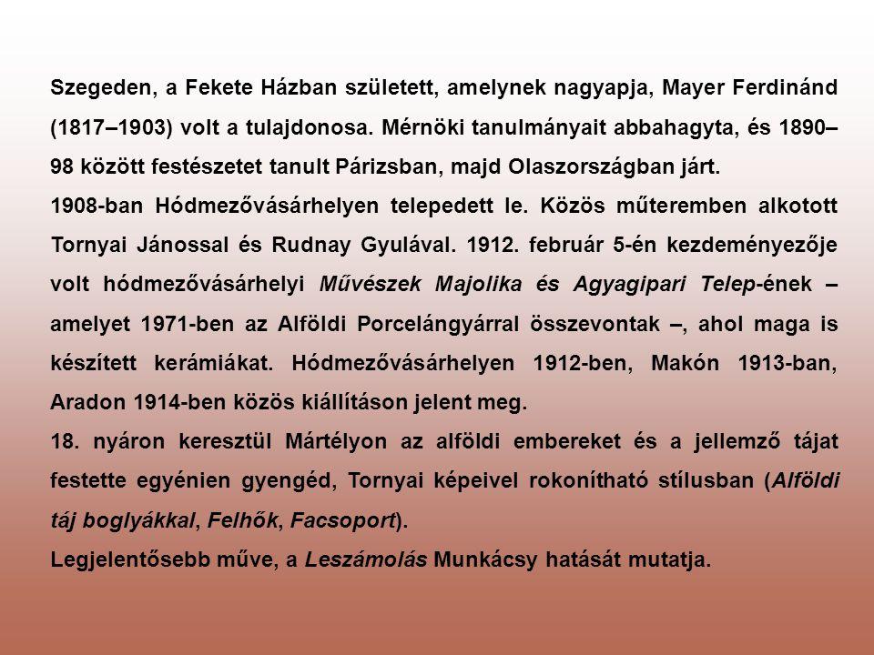 Szegeden, a Fekete Házban született, amelynek nagyapja, Mayer Ferdinánd (1817–1903) volt a tulajdonosa. Mérnöki tanulmányait abbahagyta, és 1890–98 között festészetet tanult Párizsban, majd Olaszországban járt.