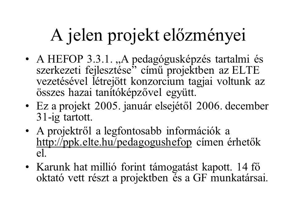 A jelen projekt előzményei