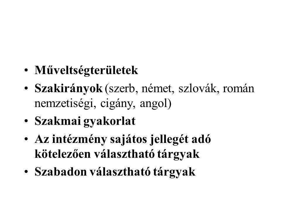 Műveltségterületek Szakirányok (szerb, német, szlovák, román nemzetiségi, cigány, angol) Szakmai gyakorlat.
