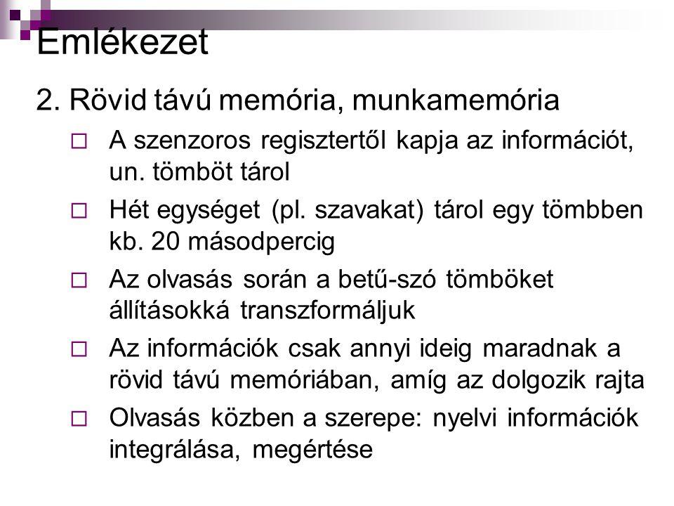 Emlékezet 2. Rövid távú memória, munkamemória