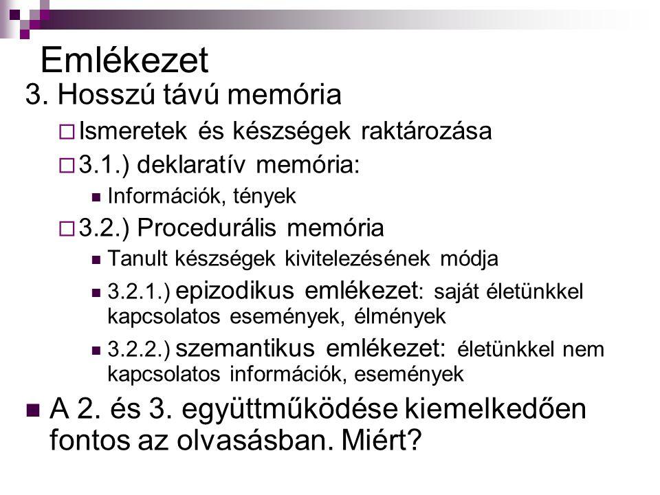Emlékezet 3. Hosszú távú memória
