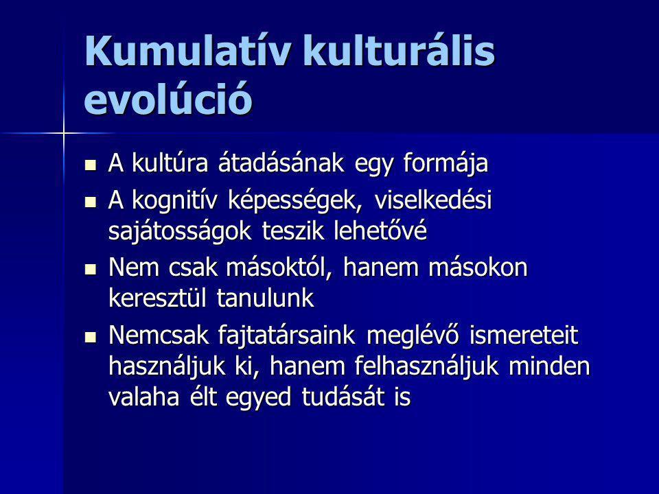 Kumulatív kulturális evolúció