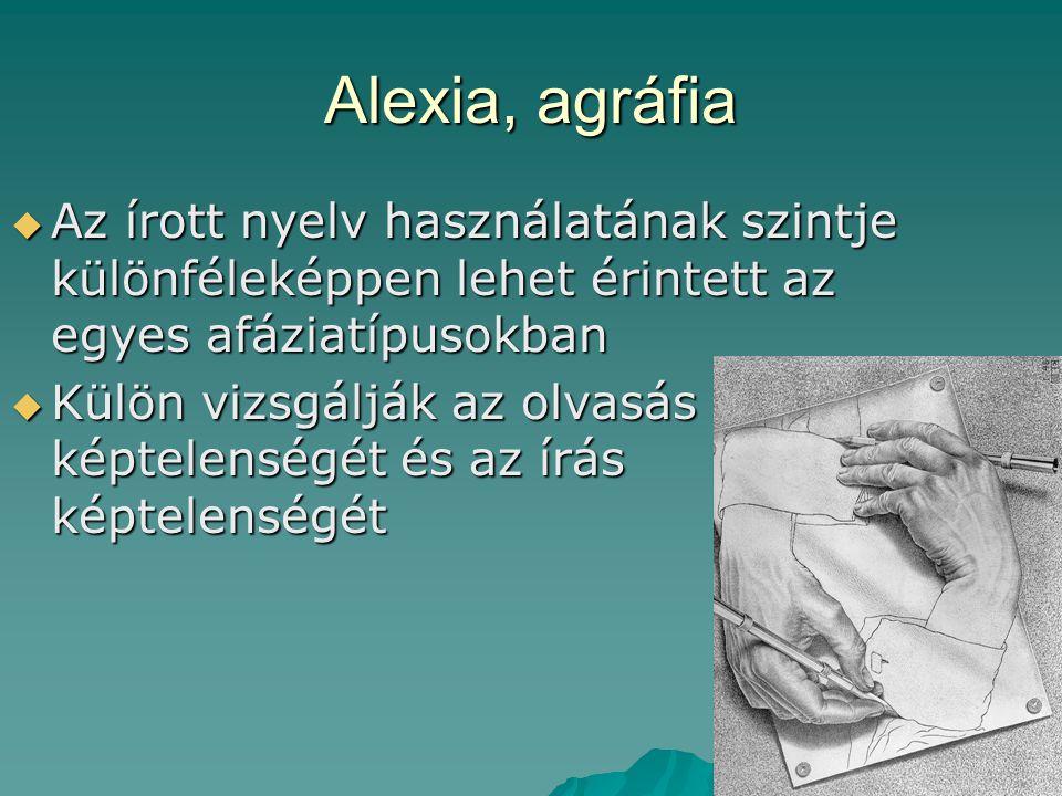 Alexia, agráfia Az írott nyelv használatának szintje különféleképpen lehet érintett az egyes afáziatípusokban.